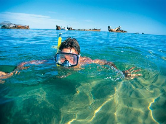 Snorkelling in Tangalooma Wrecks