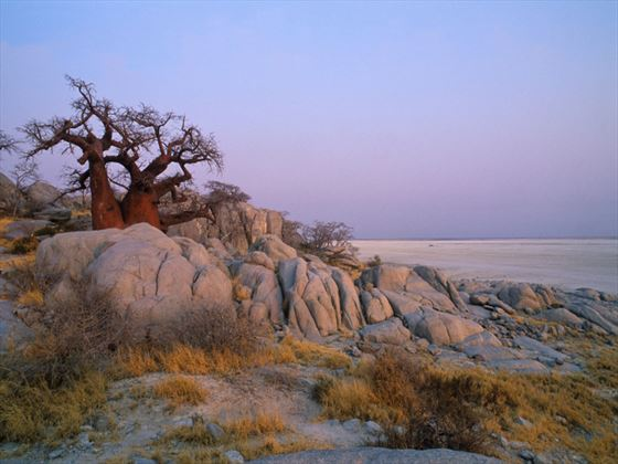 Sunrise at Kubu Island, Botswana