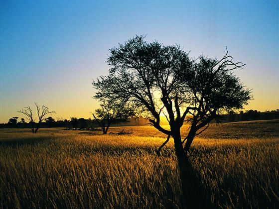 Sunset at Kalahari Gemsbok National Park, South Africa