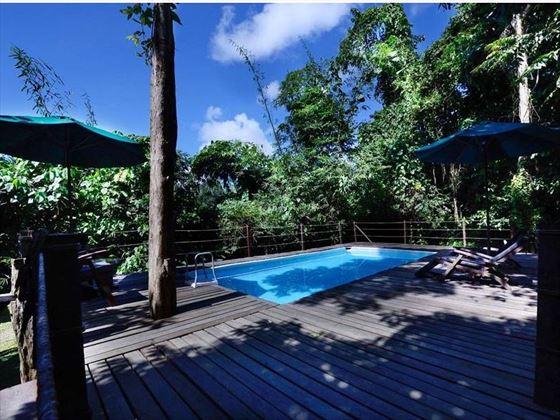 Swimming Pool at Sukau Rainforest Lodge
