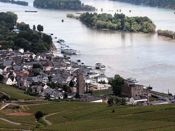 The charming wine town of Rudesheim
