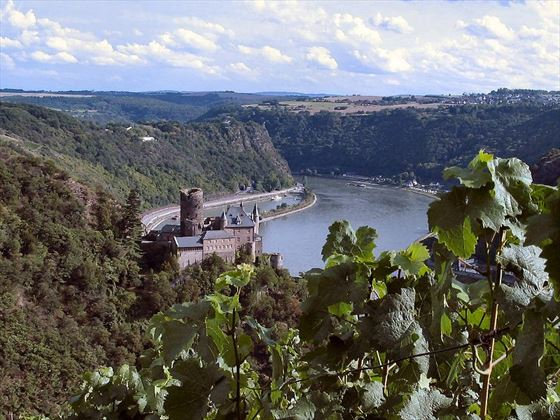 The Rhine Gorge