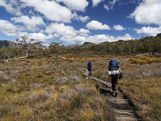 Trekking in Tasmania