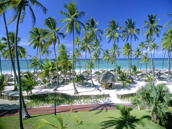 View of the beach at Occidental Punta Cana