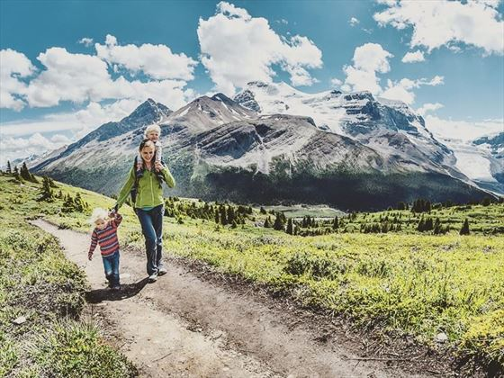 Walking the Wilcox Pass Trail in Jasper National Park