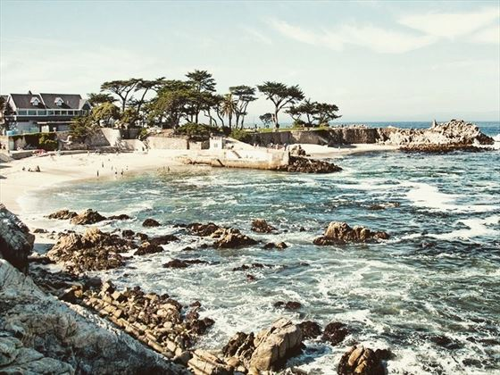 Waves crash against the rocky shore in Carmel