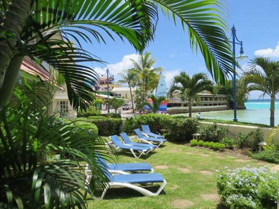Yellow Bird Hotel gardens