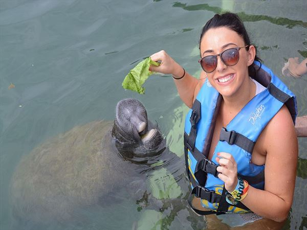 georgina feeding manatee