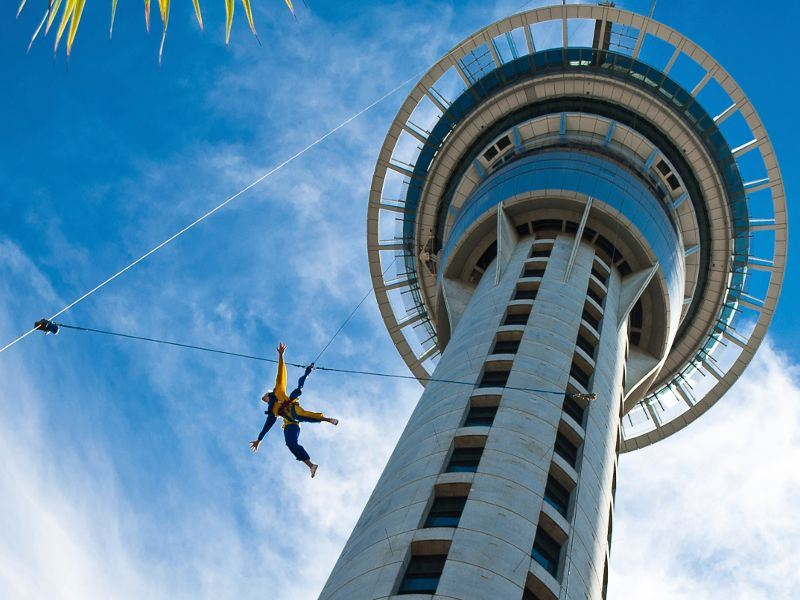 auckland sky tower and bungee jumper