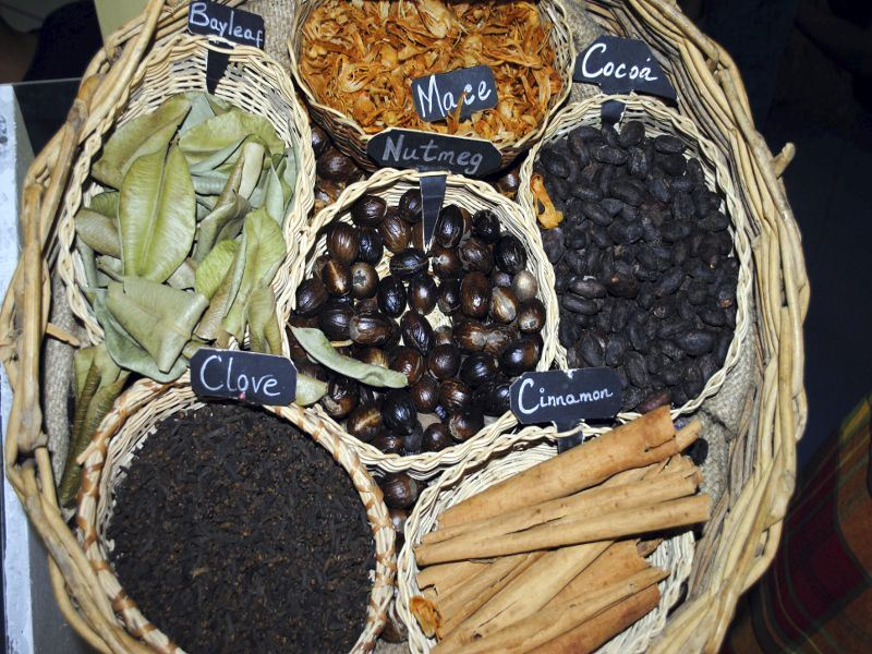 caribbean spices in grenada