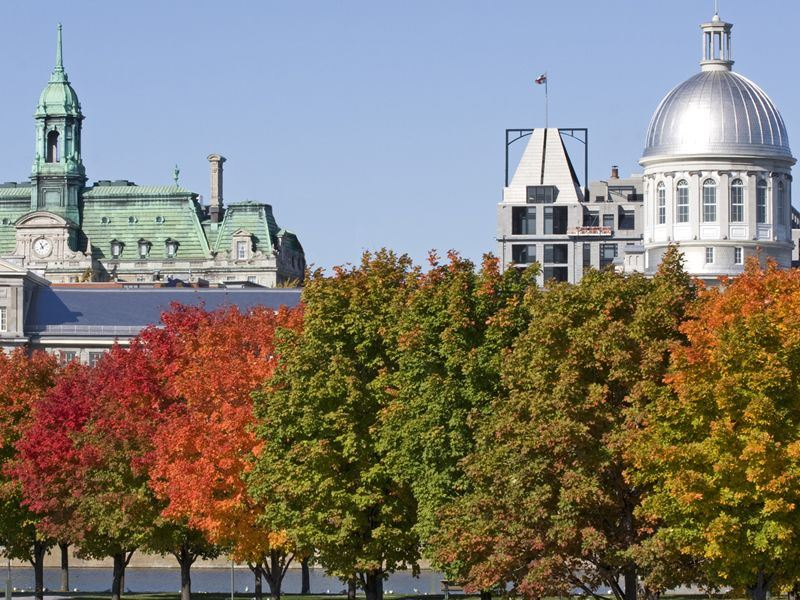 City Hall of Montreal and Bonsecours market in autumn