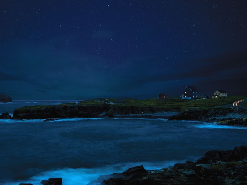 elliston at night newfoundland labrador