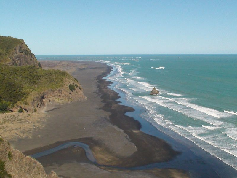 guided walk along the coast   auckland and nz tours