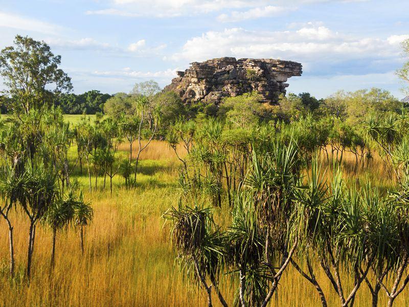 Kakadu National Park landscape