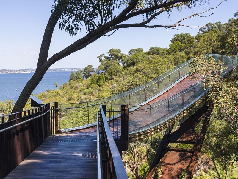 kings park treetops bridge perth