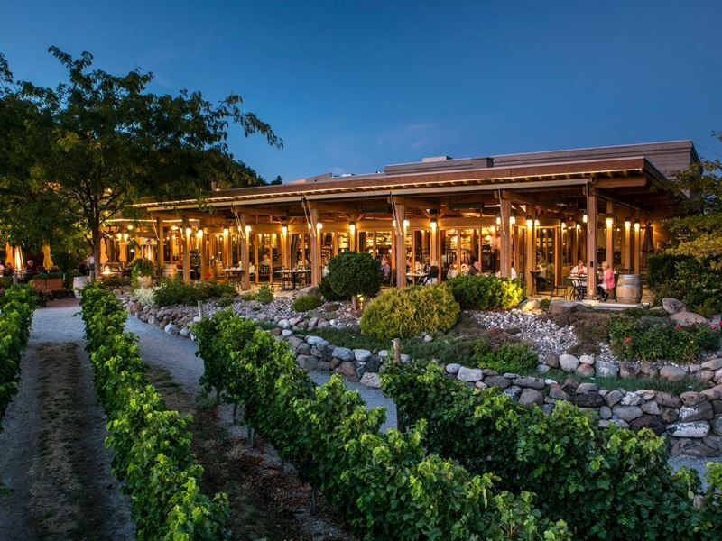 Old Vines Restaurant and Quails Gate, Okanagan Valley