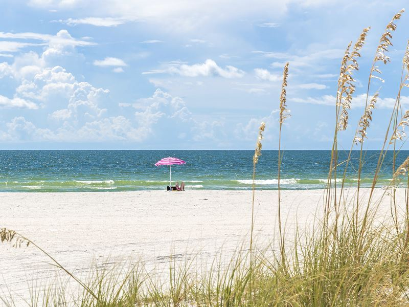 pink umbrella on st pete beach