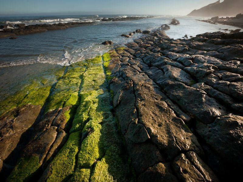 rock formations on the west coast new zealand