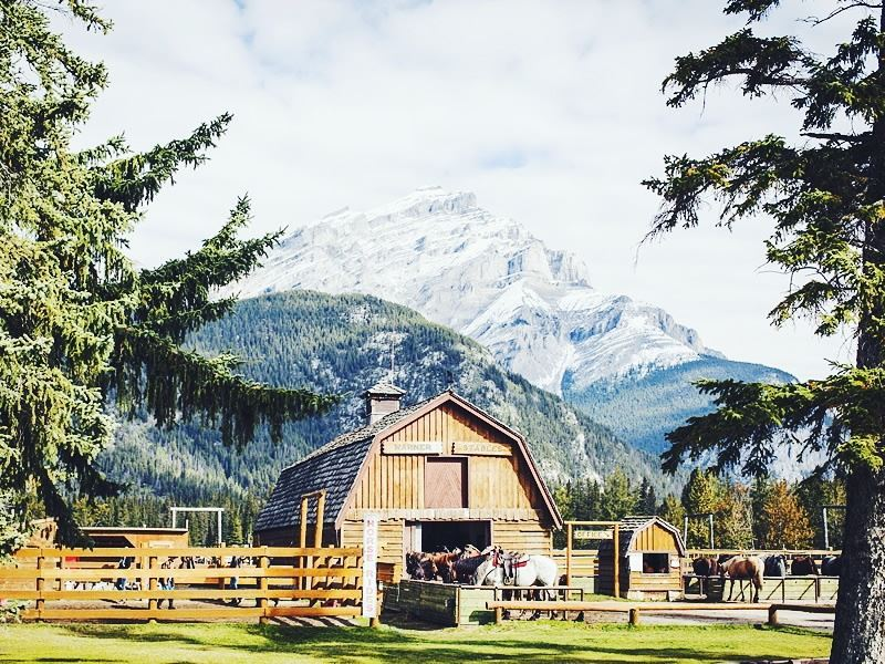 warner stables against the mountain backdrop of banff national park