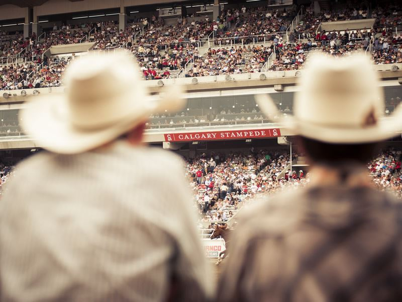 watching rodeo at the calgary stampede