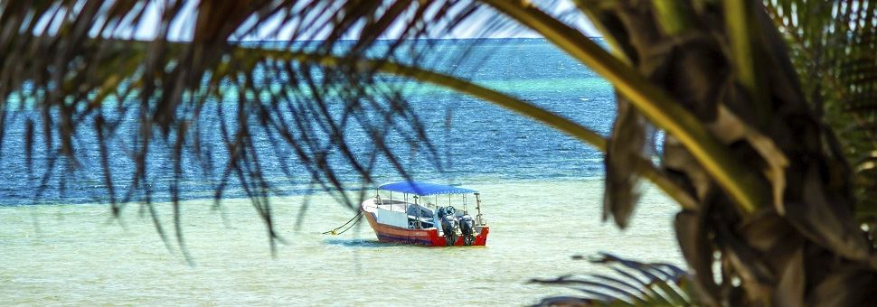 Kenya's coast