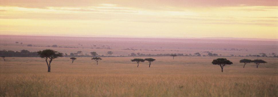 Maasai Mara National Reserve Vacations Book Maasai Mara